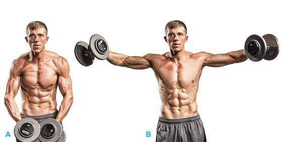 Side Lateral Raise Zane S Shoulder Workout