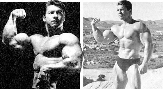 Who Else Wants To Know The Mystery Behind vegan bodybuilding diet?