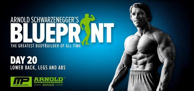 Arnold schwarzenegger workout routine for beginners pdf arnold frank best malvernweather Images