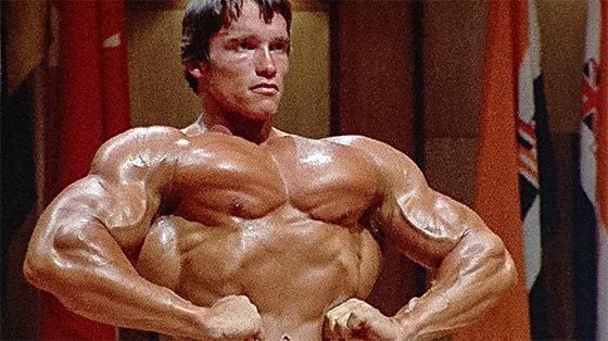 Arnold schwarzenegger blueprint trainer day 25 arnold was the best because he recorded every detail of his work he measured his results so he could compare his numbers and assess his progress malvernweather Choice Image