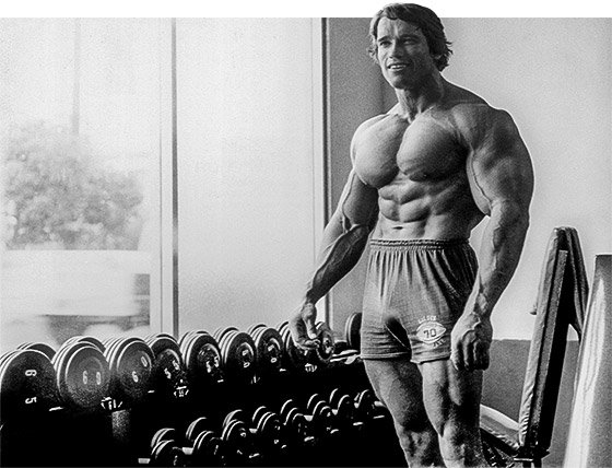 Arnold iswas the pinnacle of aesthetics let me aware you gtfih highly recommend watching the documentary when you have time very interdasting srs inspired me to go harder in the gym and stay dedicated to my diet malvernweather Image collections
