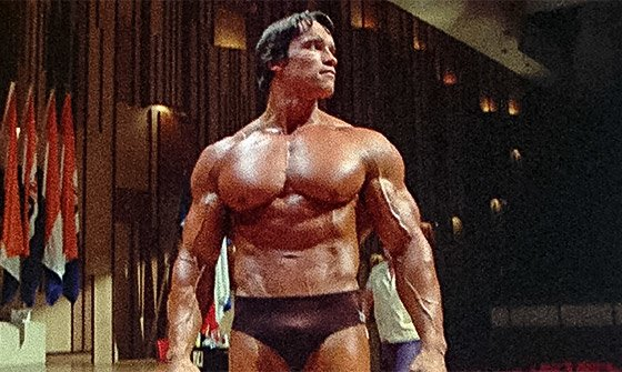 Arnold schwarzenegger blueprint trainer day 53 yes and no theres often a point where you say its getting too intense here your partner might be a little scared of the next set because youve been malvernweather Choice Image