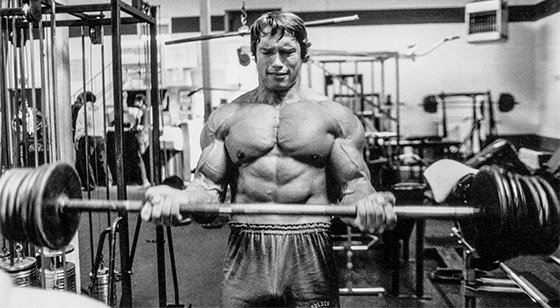 Arnold schwarzenegger blueprint trainer mass training overview arnold relied on the barbell curl to build thick biceps malvernweather Gallery