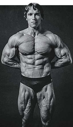 Arnolds blueprint to mass arnold bodybuilding fitness building a certain amount of mass and have worked on your weak points its time to carve some detail with the combination of diet high repetitions malvernweather Choice Image