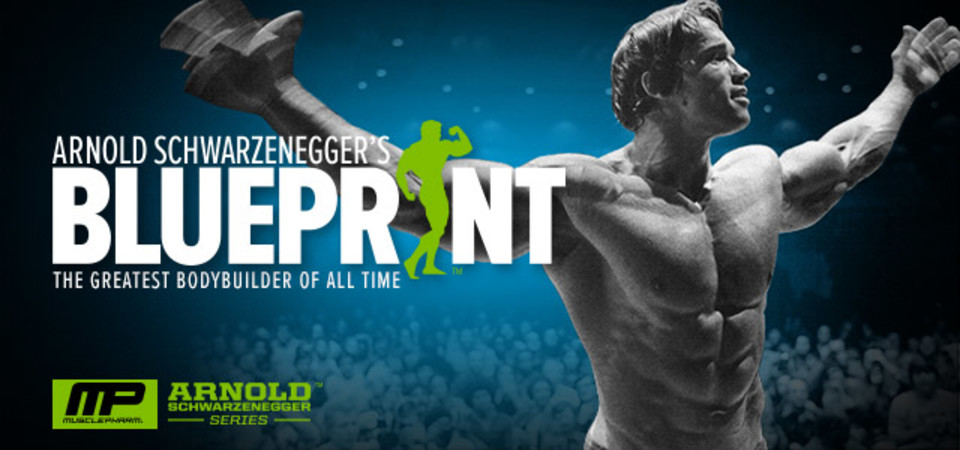 Arnold schwarzenegger blueprint trainer day 12 malvernweather Choice Image