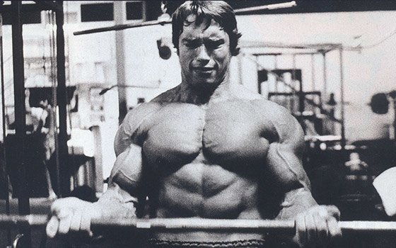 Arnold schwarzenegger blueprint trainer mass supplementation the proteinthrough regular meals arnold says this is why we have supplements no matter how healthy we eat we wont get enough from regular meals malvernweather Images