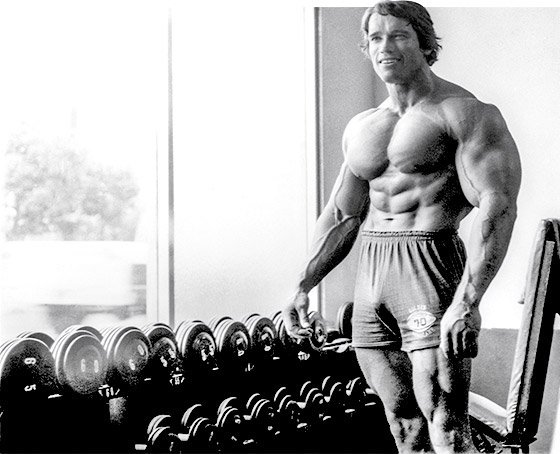 Arnold's Blueprint For Mammoth Shoulders And Arms