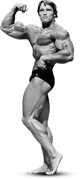 Fitness reviews and images arnolds blueprint for mammoth shoulders arnold went heavy with presses and upright rows especially early in his workouts when his energy levels were highest multijoint movements like these are malvernweather Gallery