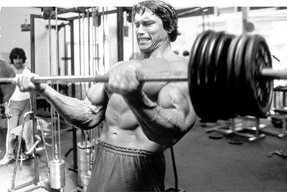 Image result for arnold schwarzenegger biceps