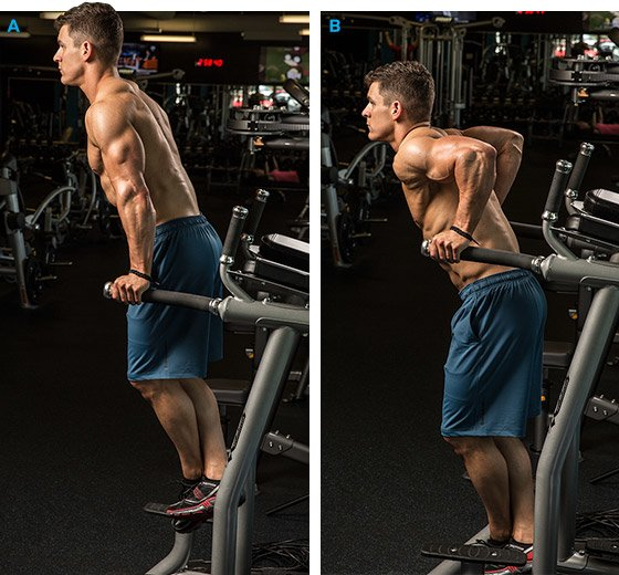 Best 10 Moves For Herculean Triceps