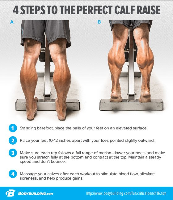 4 steps to the perfect calf raise