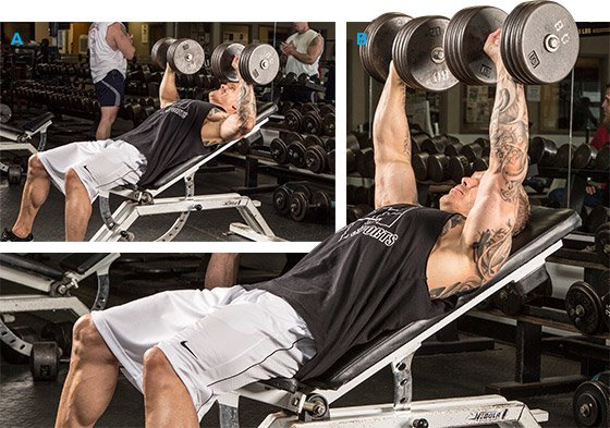 Incline Bench Press Angle Incline Dumbbell Bench Press