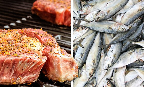「creatine food」の画像検索結果