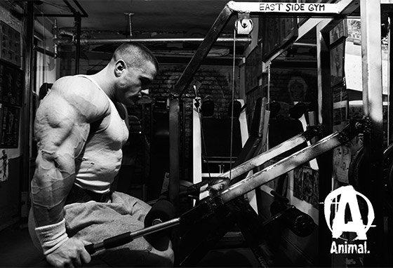 Bodybuilding Diet on a Budget