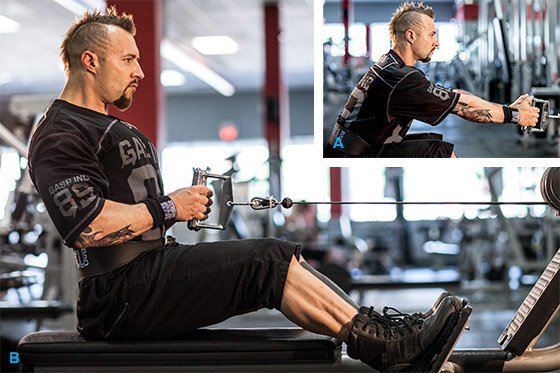 kris gethin 12 muscle building trainer pdf