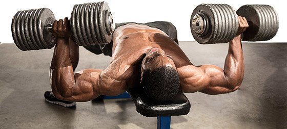 The more creatine available, the more that can ultimately be used for energy, allowing you to train harder and longer.