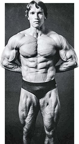 How arnold built his legs and abs how arnold built his legs and abs malvernweather Image collections
