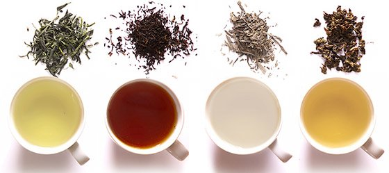 Each of the four types of tea—green, black, white and oolong—are made from the leaves of the Camellia sinensis plant.