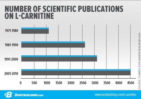 l-carnitine weight loss before and after