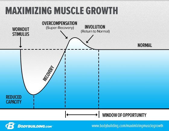 how to maximize gains on steroids