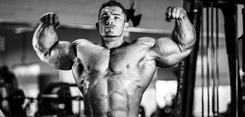 Image result for flex lewis