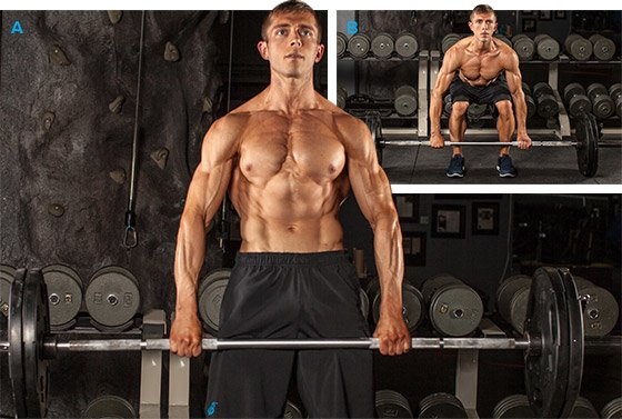 Muscletonics : Muscle toning for the over 40, 50 or 60 year old ...