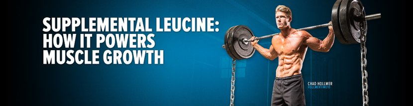 Supplemental Leucine: How It Powers Muscle Growth