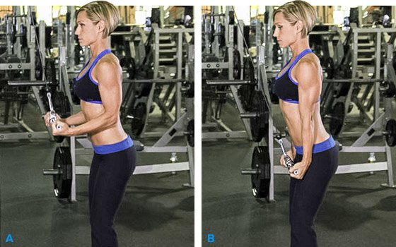 Titanic Triceps Add Serious Size To Your Arms