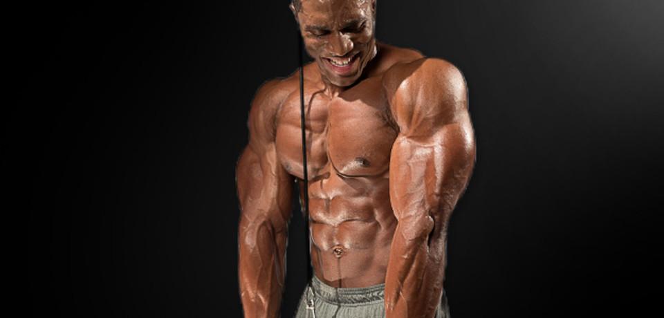 Image result for bigger triceps
