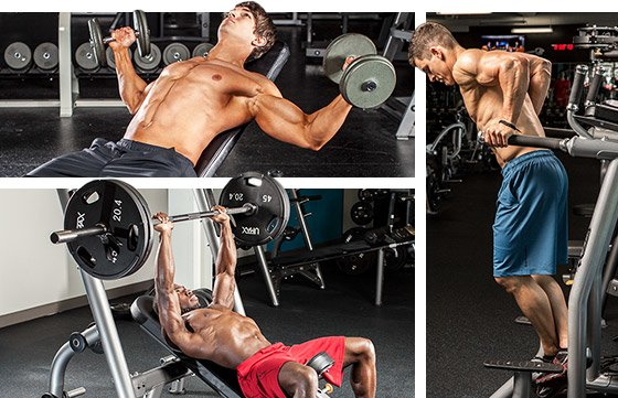 While The Flat Bench Press Is A Critical Exercise You Have To Include Number
