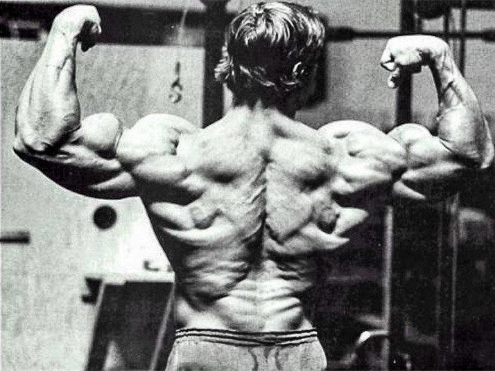 build a bigger stronger back