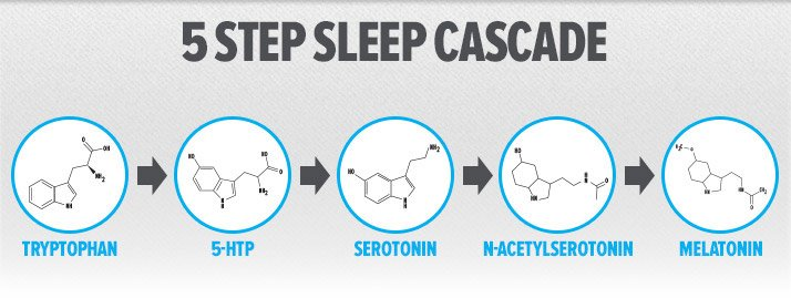 Dream Big: Supplements For Sleep And Recovery