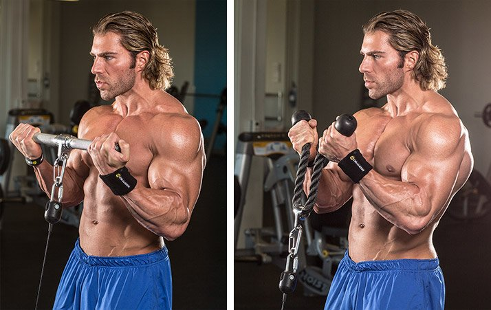 6 Ways To Build The Biceps Short Head