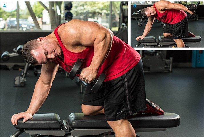 Training lifebodybuilding espace membres for Exterieur triceps