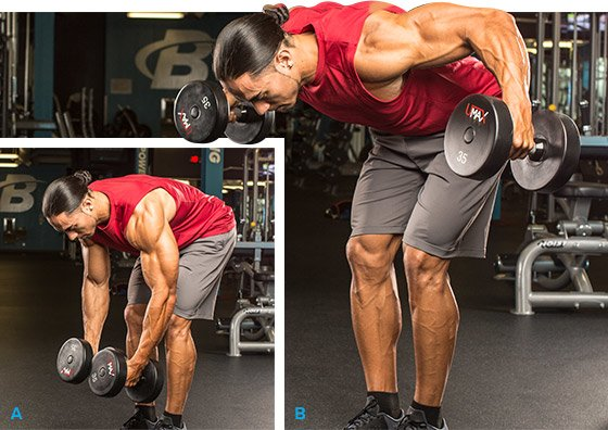 Standing Bent-Over With Dumbbells