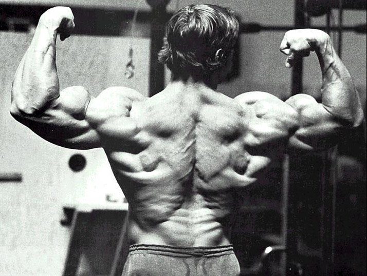 Arnold schwarzenegger blueprint trainer mass supplementation overview the proteinthrough regular meals arnold says this is why we have supplements no matter how healthy we eat we wont get enough from regular meals malvernweather Choice Image
