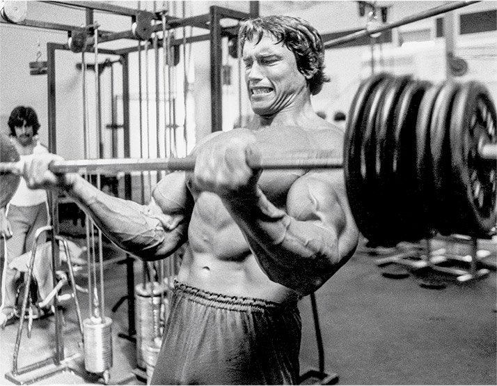 Arnold Schwarzenegger's Blueprint To Cut: Training