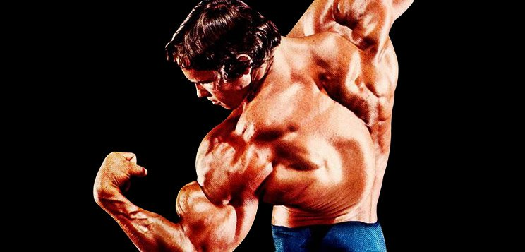 Bodybuilding arnold cut 28 images arnold schwarzenegger s bodybuilding malvernweather Image collections