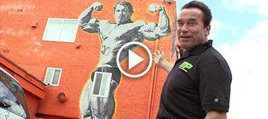 Arnold schwarzeneggers blueprint to mass bonus venice car tour malvernweather Images