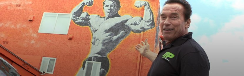 Arnold Schwarzenegger Blueprint Trainer: Venice Car Tour