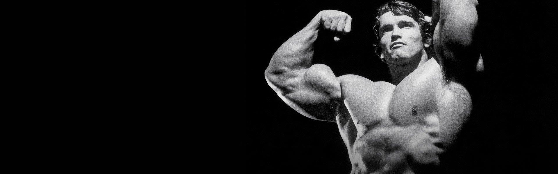 Arnold schwarzenegger workout supplements reviews most popular arnold schwarzenegger blueprint trainer day 2 malvernweather Images