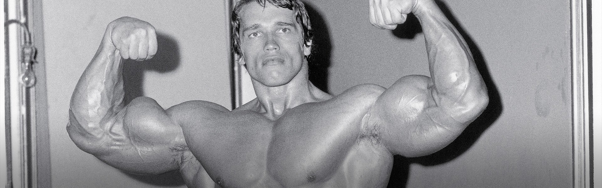 Arnold schwarzenegger blueprint trainer day 11 malvernweather Images