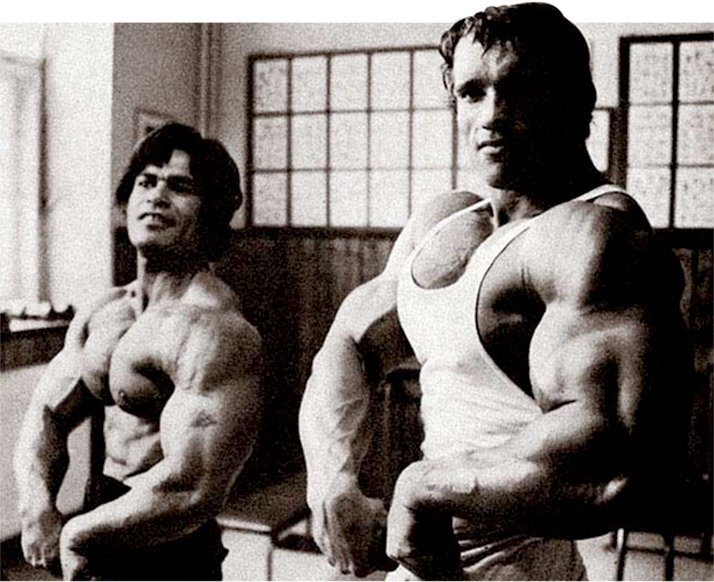 Arnold schwarzenegger blueprint trainer day 11 previous main next the arnold blueprint malvernweather Choice Image