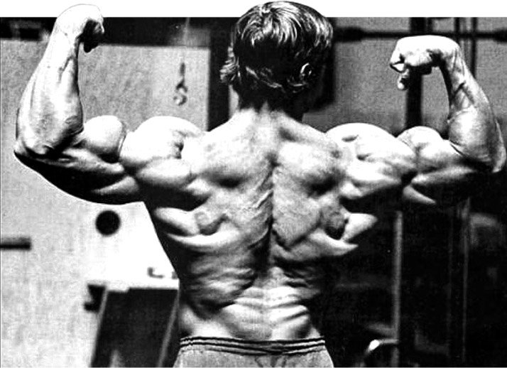 Arnold schwarzenegger blueprint trainer day 45 lower back legs and abs malvernweather Image collections