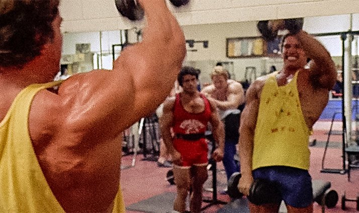 Arnold schwarzenegger blueprint trainer day 5 shoulders arms and abs malvernweather Images