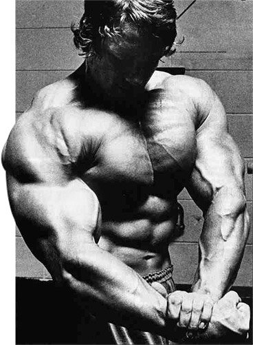Arnold schwarzenegger blueprint trainer day 50 arnold is famous among countless other things for his powers of visualization most famously he wrote in the encyclopedia in my mind i saw my biceps malvernweather Image collections