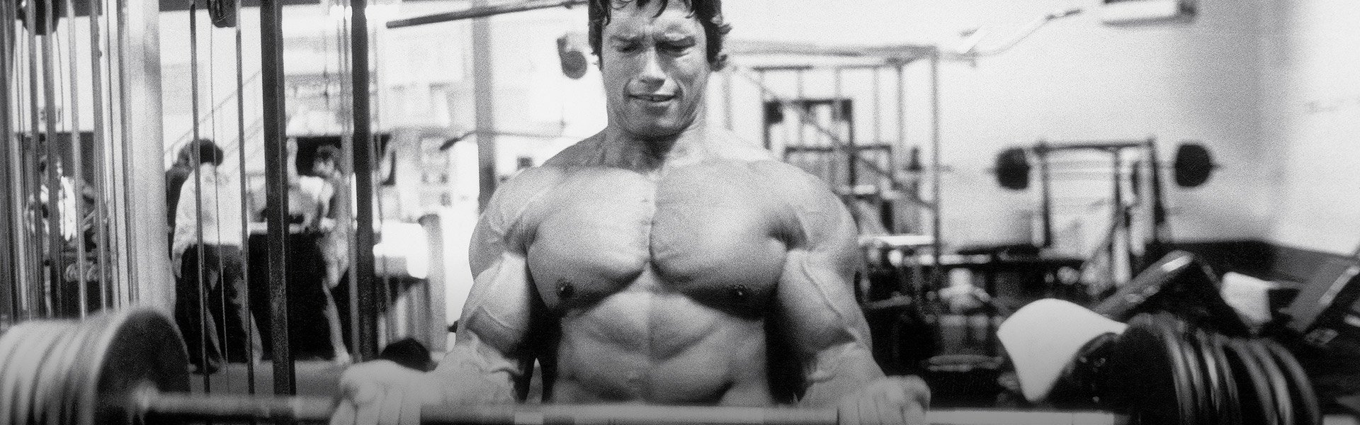 Arnold schwarzenegger blueprint trainer day 19 malvernweather Choice Image