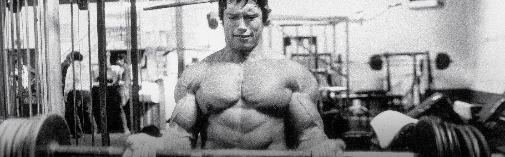 Arnold schwarzenegger 6 day workout plan sport fatare 1000 images arnold schwarzenegger blueprint malvernweather Images