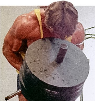 Arnold schwarzenegger blueprint trainer mass training overview the dumbbells together and flexing like youre doing the most muscular pose made all the difference that exercise couldnt be replaced by any machine malvernweather Image collections