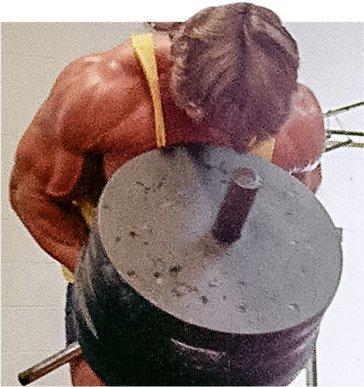 Body building fitness motivation back malvernweather Images